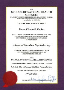 Adv Dip Meridian Psychotherapy